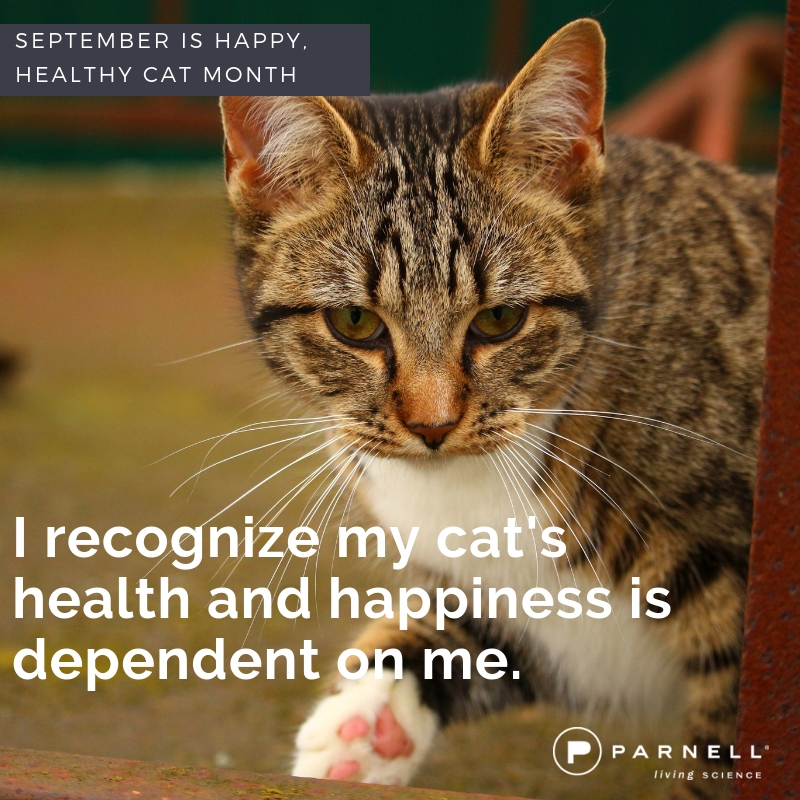 Health and happiness is up to us!