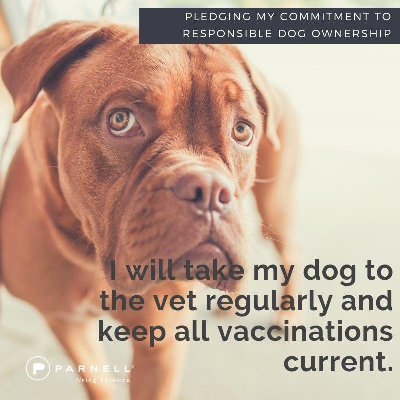 5 vet visits