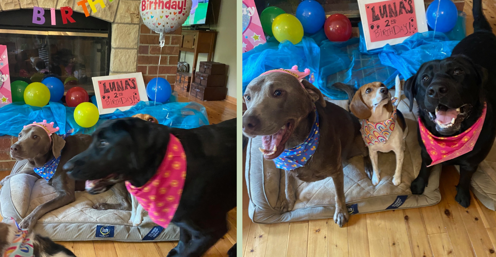 Birthday collage 4