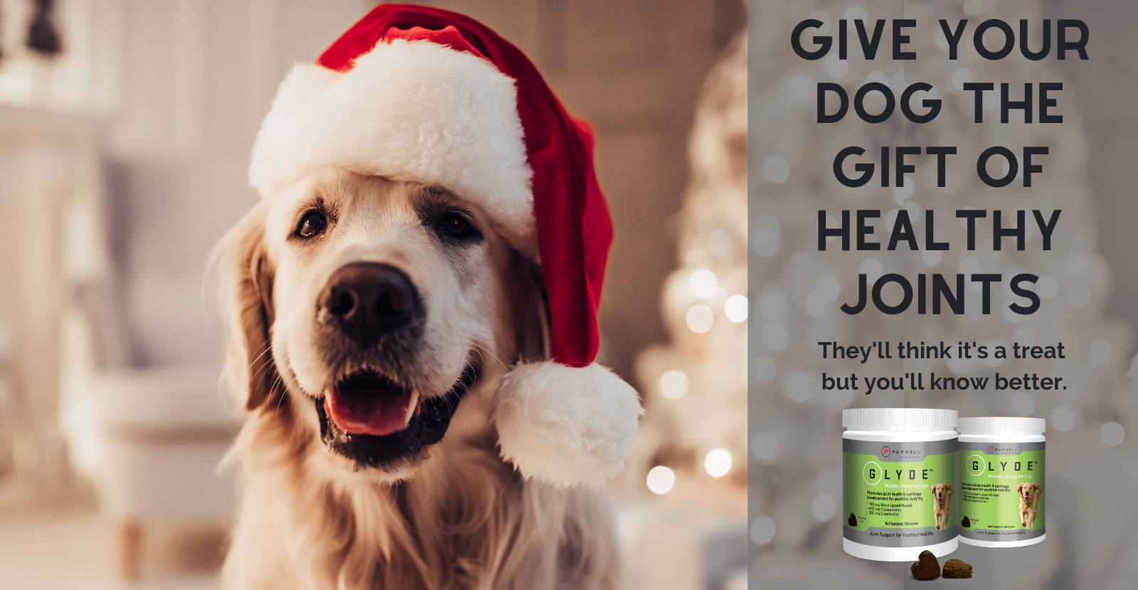 Give the gift of healthy joints US-1