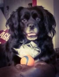 Luna Loves Glyde!