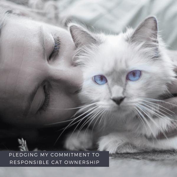 Responsible Cat