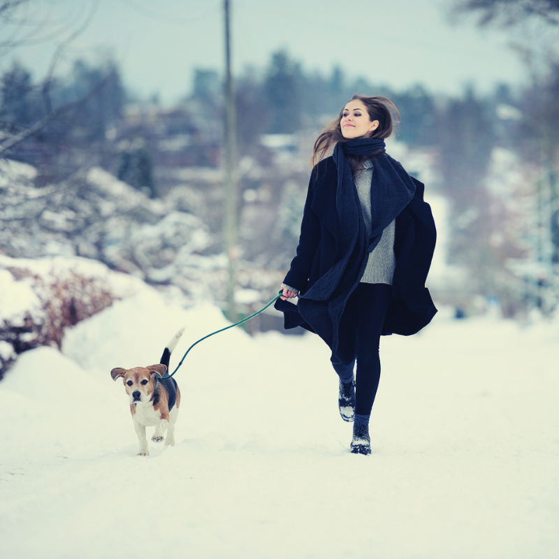 Walk the dog in the cold