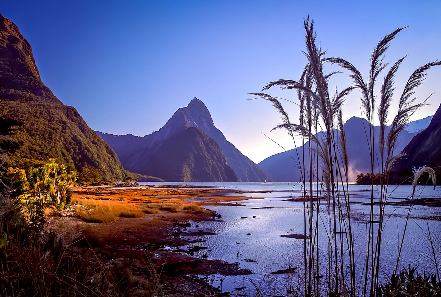 New Zealand where GLMs are from