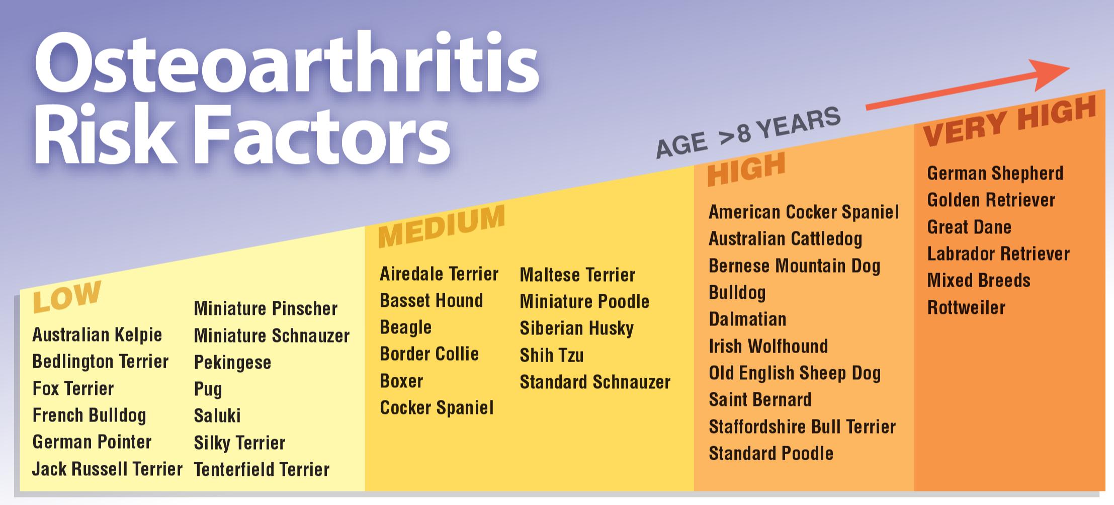 OA Risk Factors Chart v2