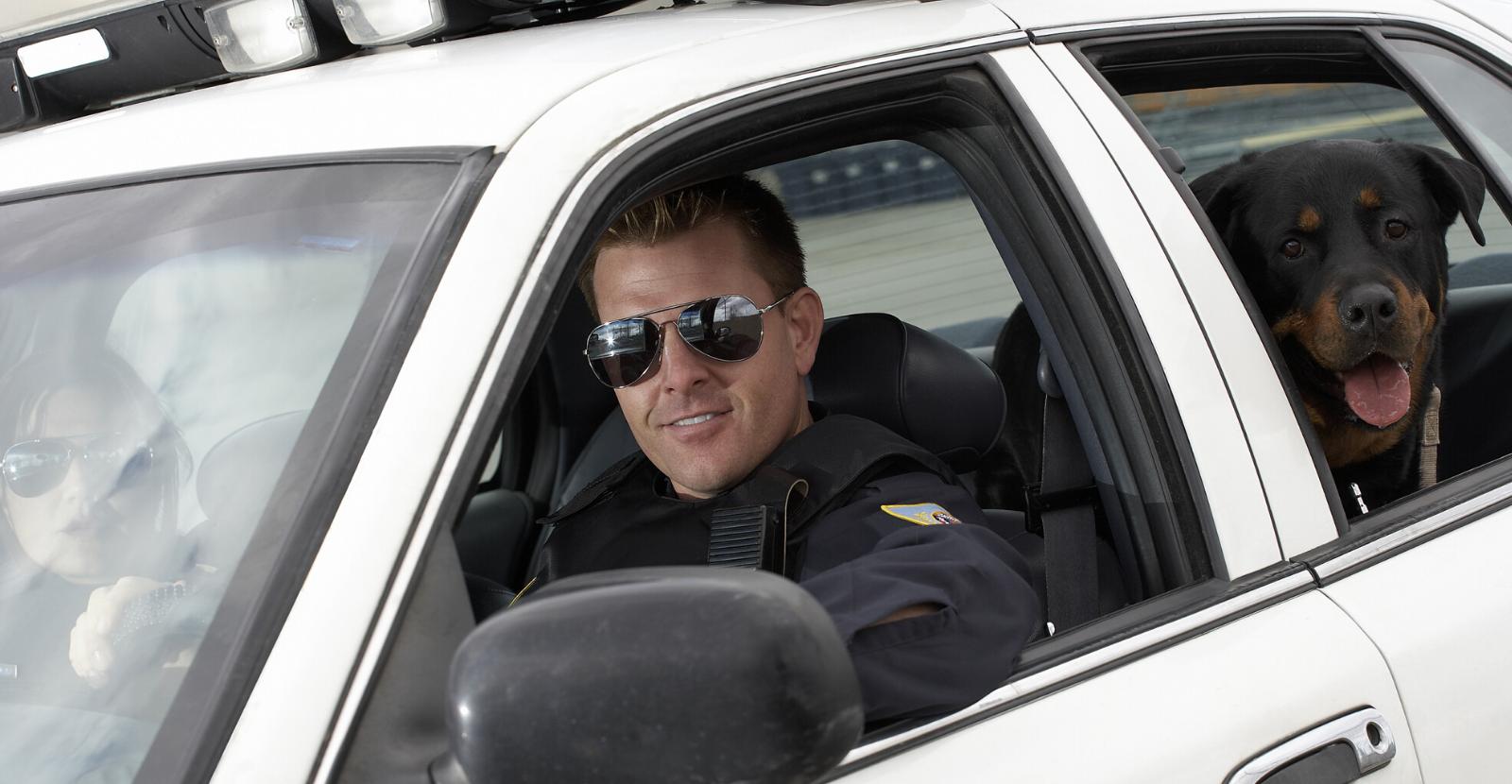 Police Rottie