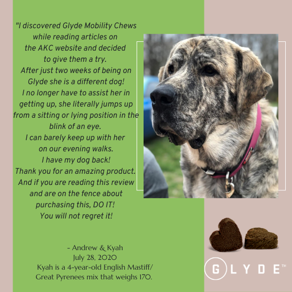 Our Customers Love Glyde!