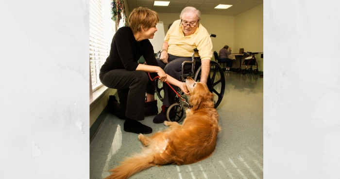 therapy dog 700